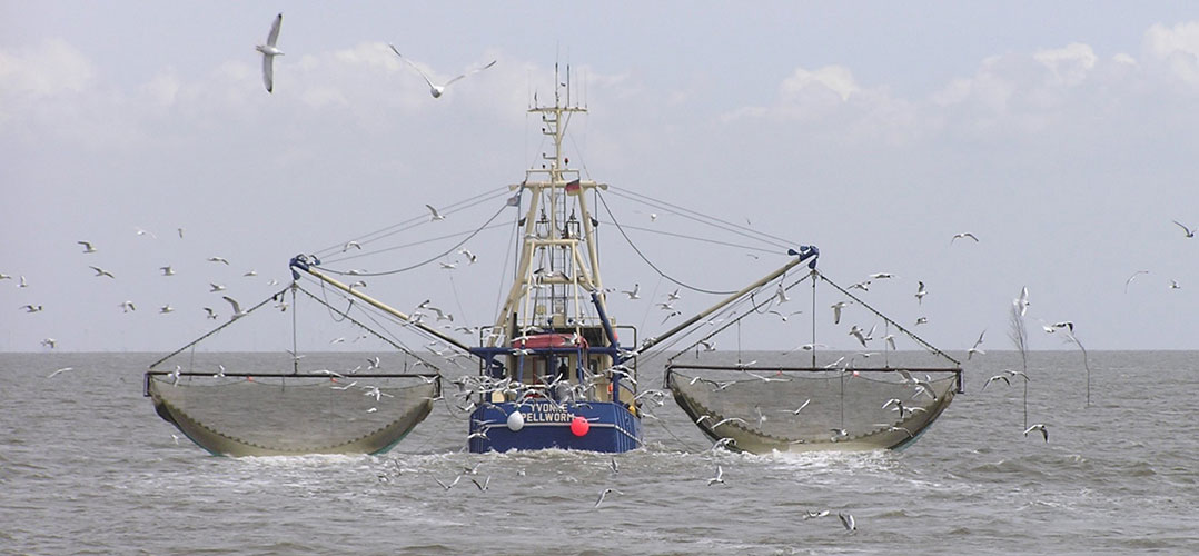 fishing boat, image by Joachim Mullerchen, https://commons.wikimedia.org/wiki/File:Krabbenkutter_Ivonne_Pellworm_P5242390jm.JPG, cropped